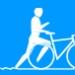 Icon modalidade